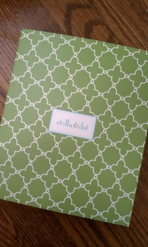 Stella and Dot box green